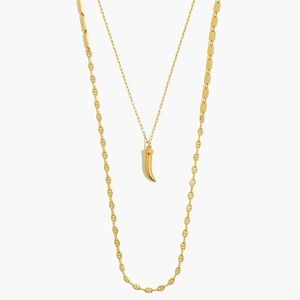 Madewell Mixed Chain Horn Pendant Necklace